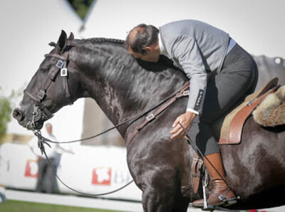 APSL distingue Funcionalidade do Cavalo Lusitano