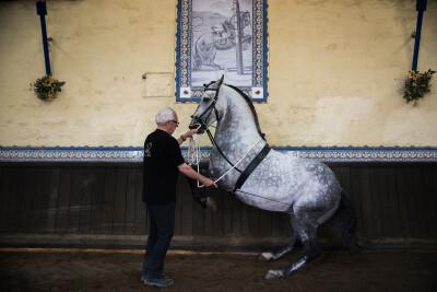 Mestre Luís Valença faz capa da Revista Equitação