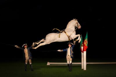 Gala Esplendor de Arte Equestre realiza-se na sexta-feira