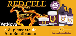 red_cell_banner (002)
