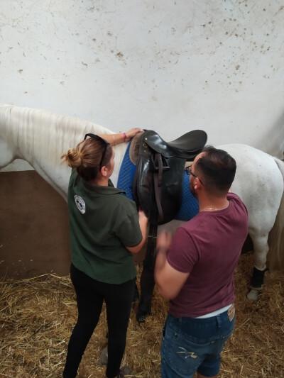 Horse Groom Recruitment tem nova parceria