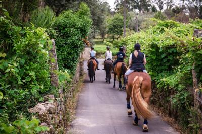 Relaxar e passear a cavalo em Cerquido