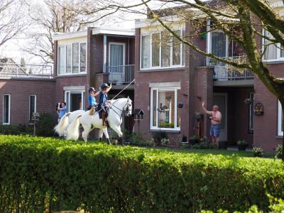 Cavaleiros criaram espectáculo equestre para idosos