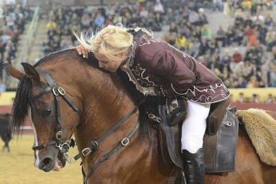 Admissão de reprodutores do Cavalo de Raça Luso-Árabe