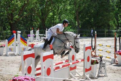 Estágio «O Cavalo de Obstáculos»