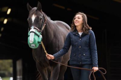 A importância dos nebulizadores equinos