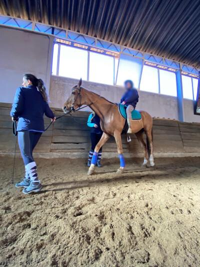 Centro Hípico da Sobreda com Terapia Assistida por Equinos