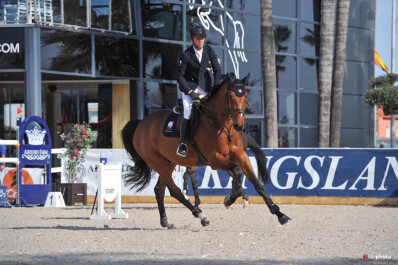 Cavalo montado por Luís Fernandes vendido a Steve Guerdat