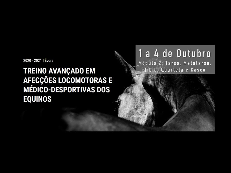 afecções locomotoras - al equine