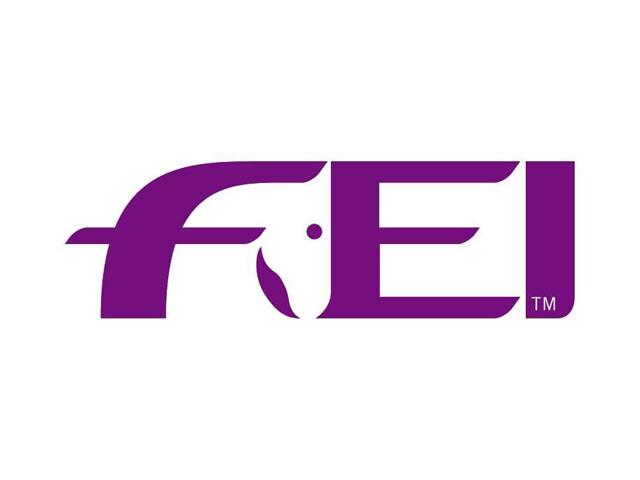 logo FEI