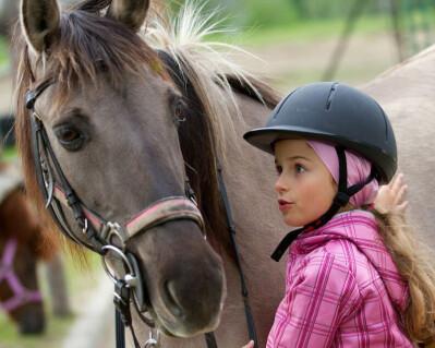 Estágios de Equitação e Atrelagem na Golegã