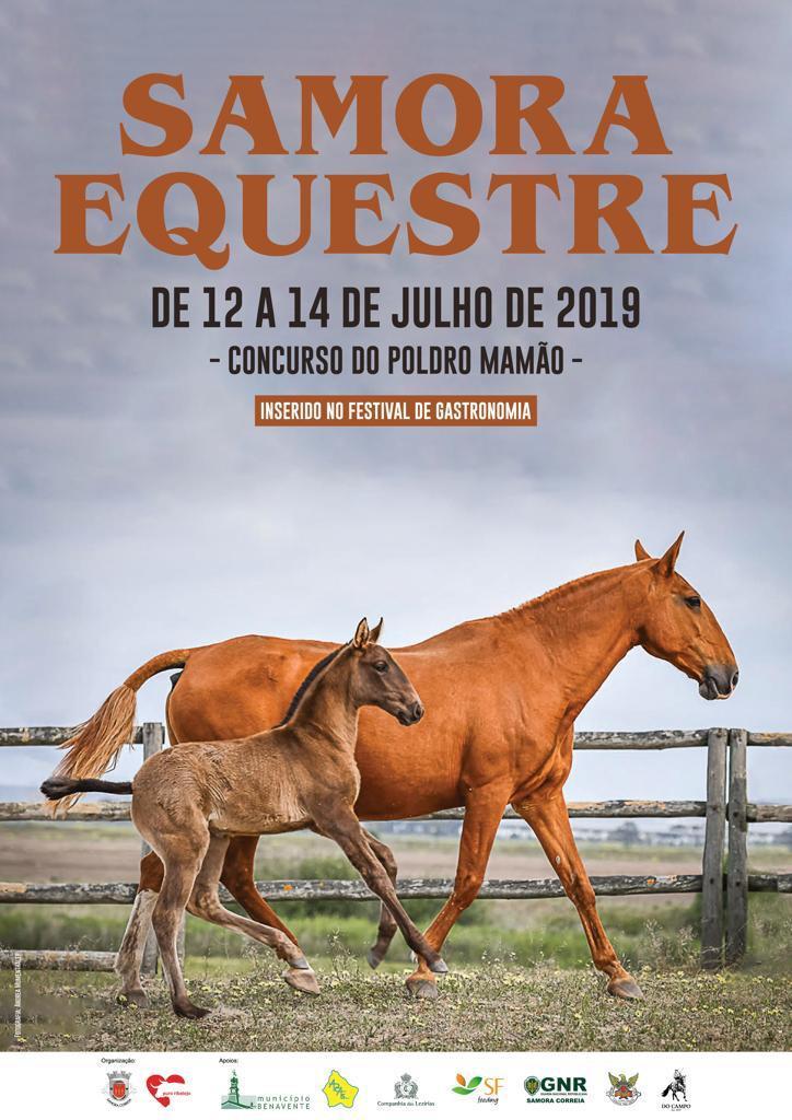 samora equestre - cartaz