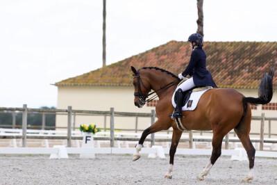 Terceiro Open do Cardiga Equestrian Circuit cancelado