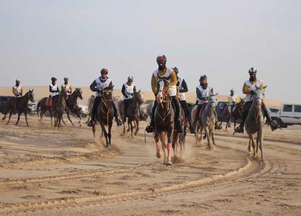 Endurance-World-Al-Maktoum-Endurance-Cup.01-e1546352469873