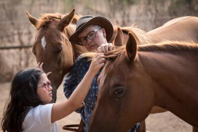 Como ganhar (ou recuperar) a confiança do seu cavalo?