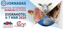 Banner Jornadas HVME