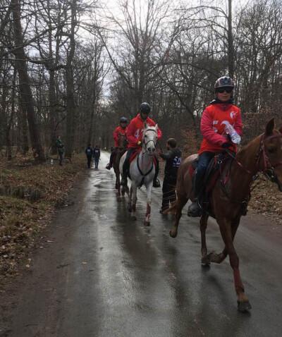 Concurso Internacional de Endurance de Fontainebleau
