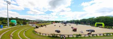 Feira do Cavalo de Ponte de Lima celebra 13.ª edição