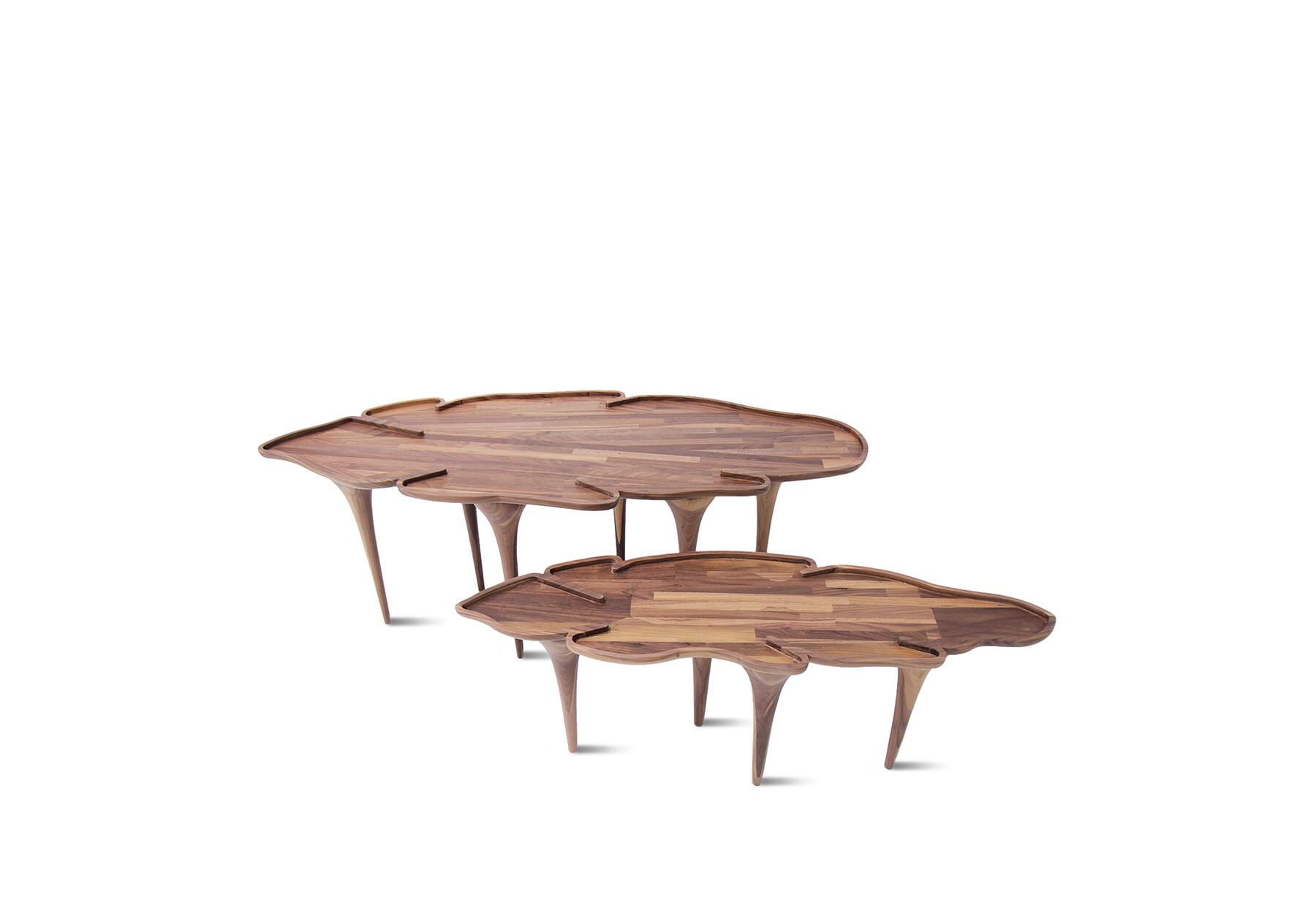 110_32 - KOROWAI COFFE TABLE site